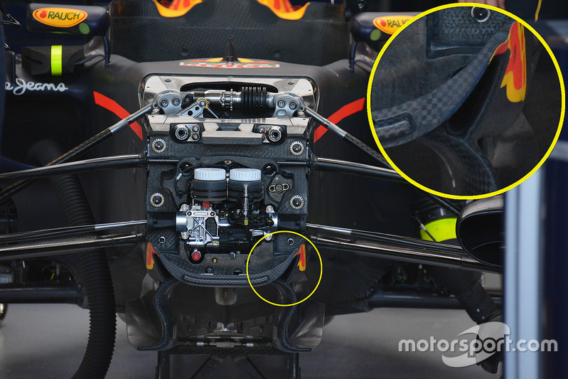 Red Bull Racing nose detail